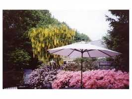 The property spans 4.5 acres.