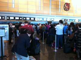 Passengers who were scheduled to board the plane back to Japan this afternoon wait in line at the terminal.