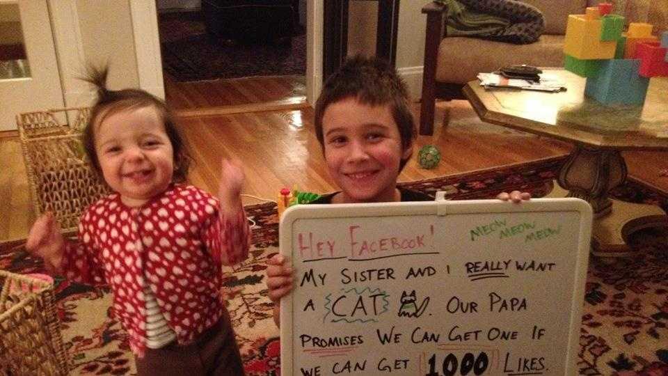 Facebook Family Likes.jpg