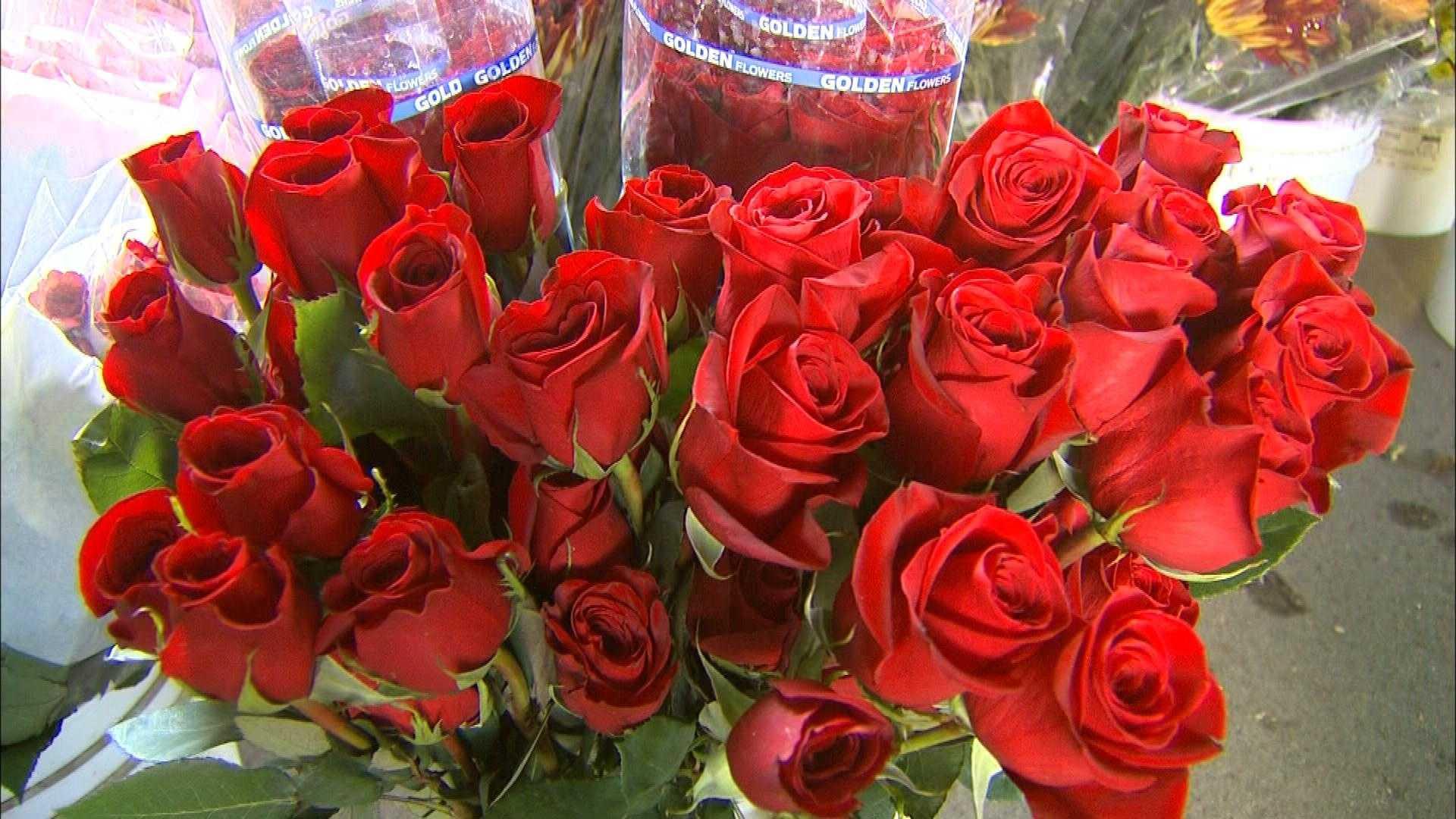 Image: Valentine Visions
