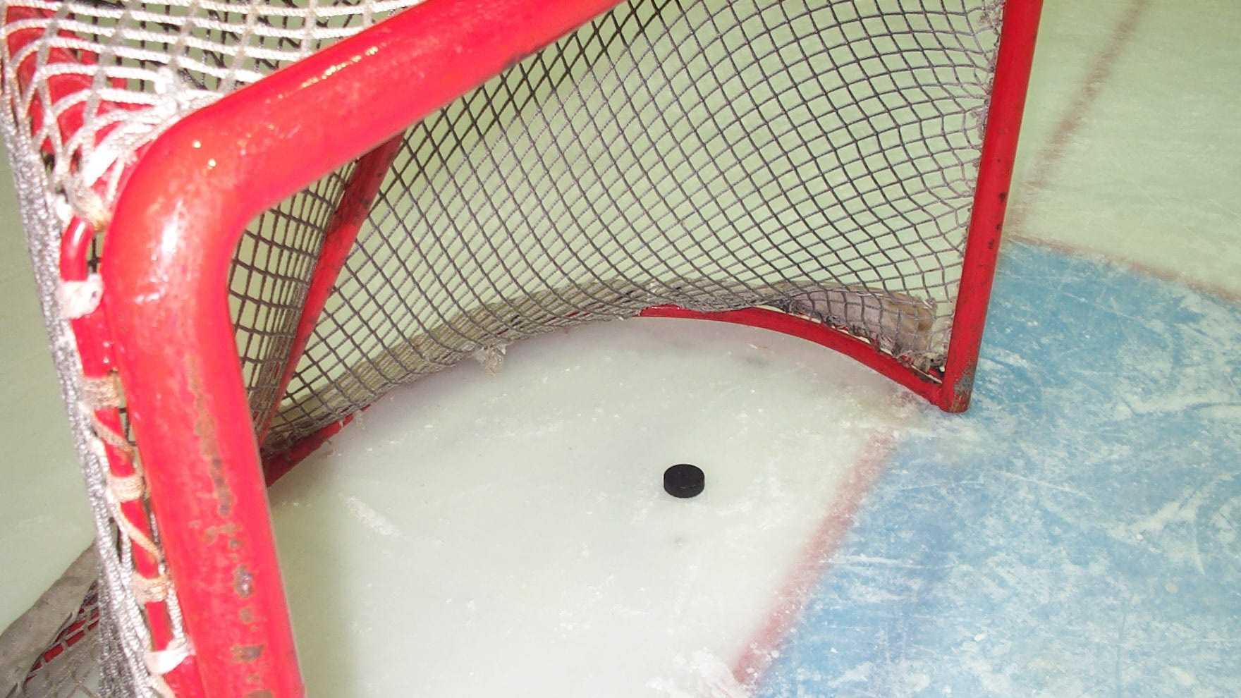 Hockey Goal Generic