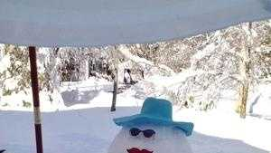 Confederate flag snowman