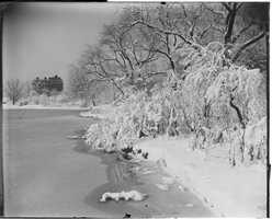 A winter scene in Fenway. A second, even bigger storm struck Boston just before Valentines Day - dropping 15 inches of snow. Photos are for illustrative purposes only and do not always reflect the actual snow event.