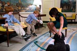 """First Lady Michelle Obama pets Bo, the Obama family dog, during a taping for """"The Ellen DeGeneres Show"""" with 6-year-old Rainer Muuss, left, and his brother Atticus, 4, in the Diplomatic Reception Room of the White House, Feb. 7, 2013."""