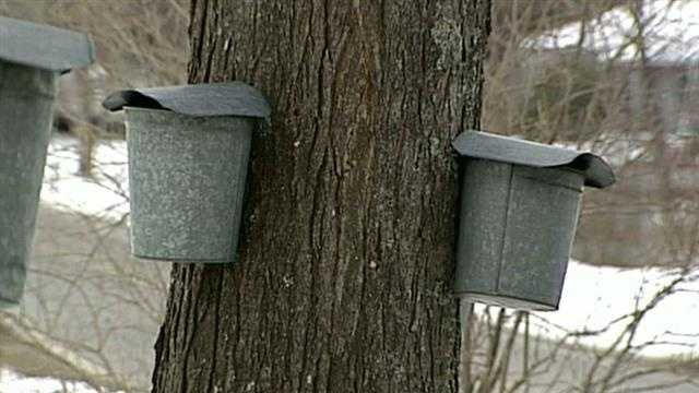 Maple Weekend underway in NH