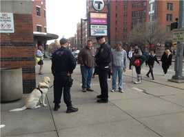 Bomb Sniffing dogs at Back Bay Station.