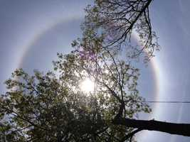 Dozens of viewers sent in photos of what appears to be a rainbow surrounding the sun.
