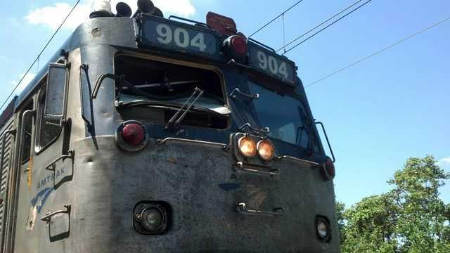 Mansfield turkey crash into train