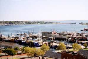 New Bedford is a number one fishing port in America and is home to the world's largest whaling museum.