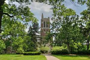 3.) Michigan State University