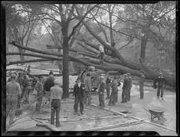 The hurricane, the first major hurricane to hit the region since 1869, left behind property losses estimated at $306 million in 1938 -- which is equal to about $4.7 billion today.