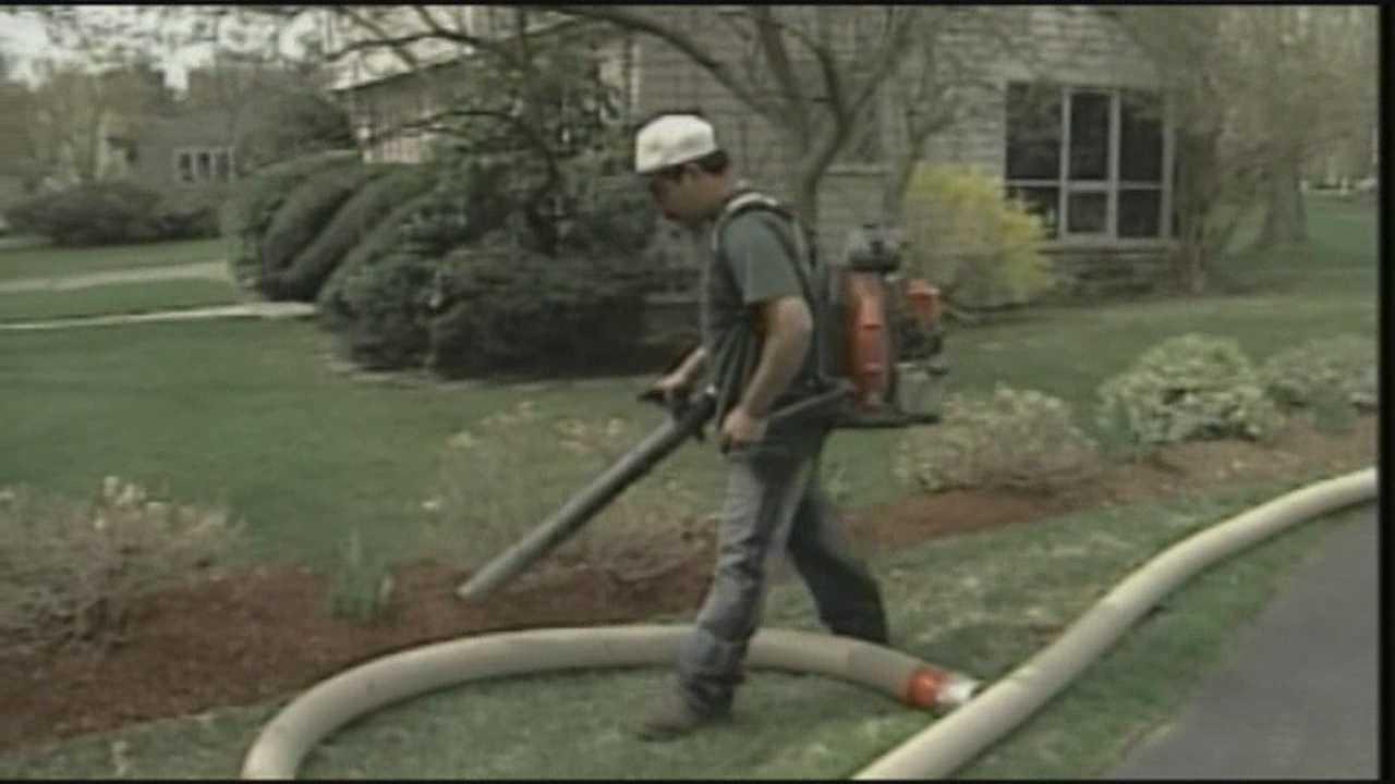 Man arrested for using leaf blower in Brookline