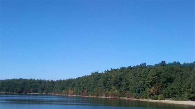 Walden Pond Search 09013