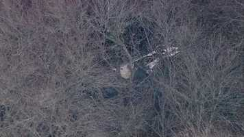 The plane crashed in the woods near a runway at Marshfield Airport shortly before 4 p.m. Friday.