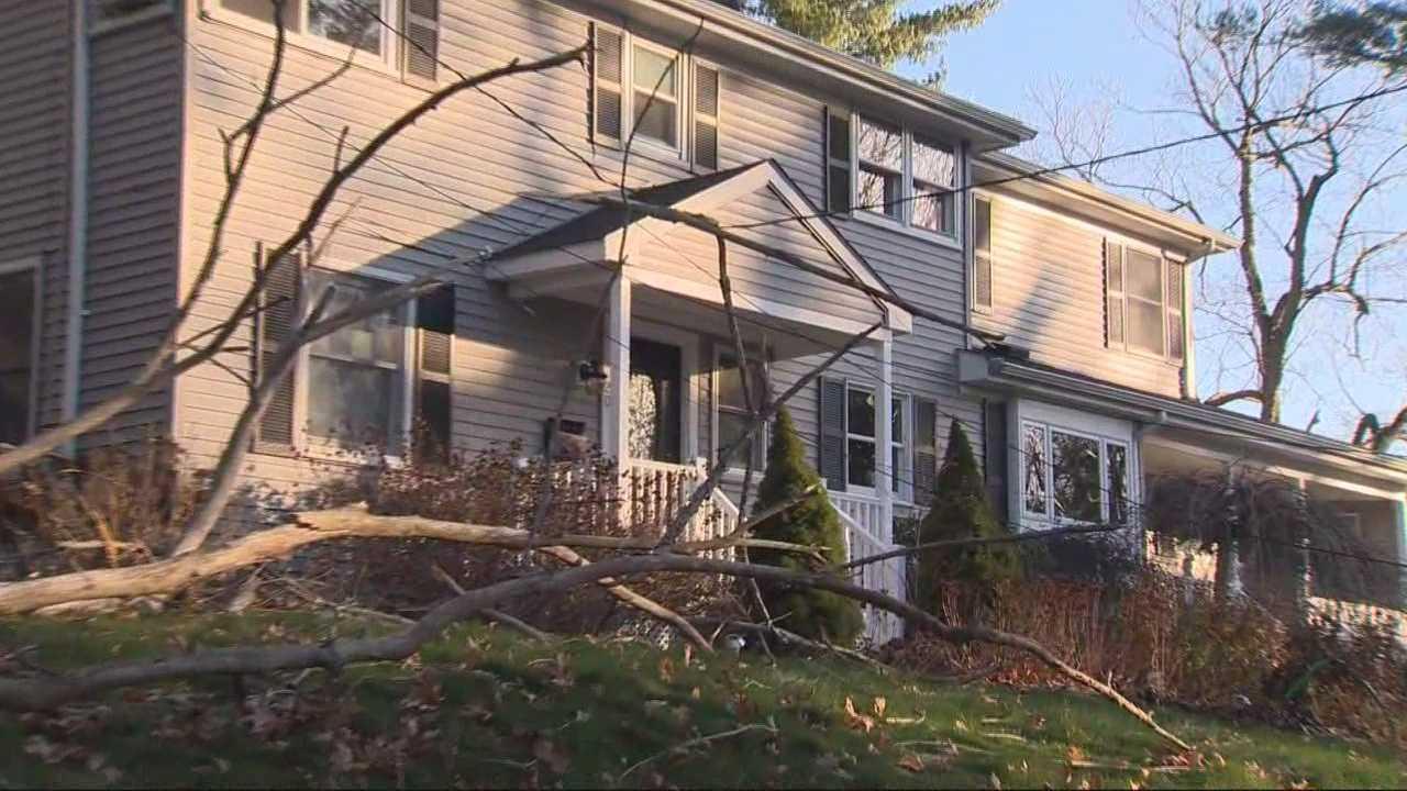 Wind topples trees, brings down power lines