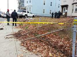 Brianna Rosales and her mother, Glendalee Alvarado, were struck by a sport utility vehicle on Olney Street in Dorchester at 2:15 p.m.