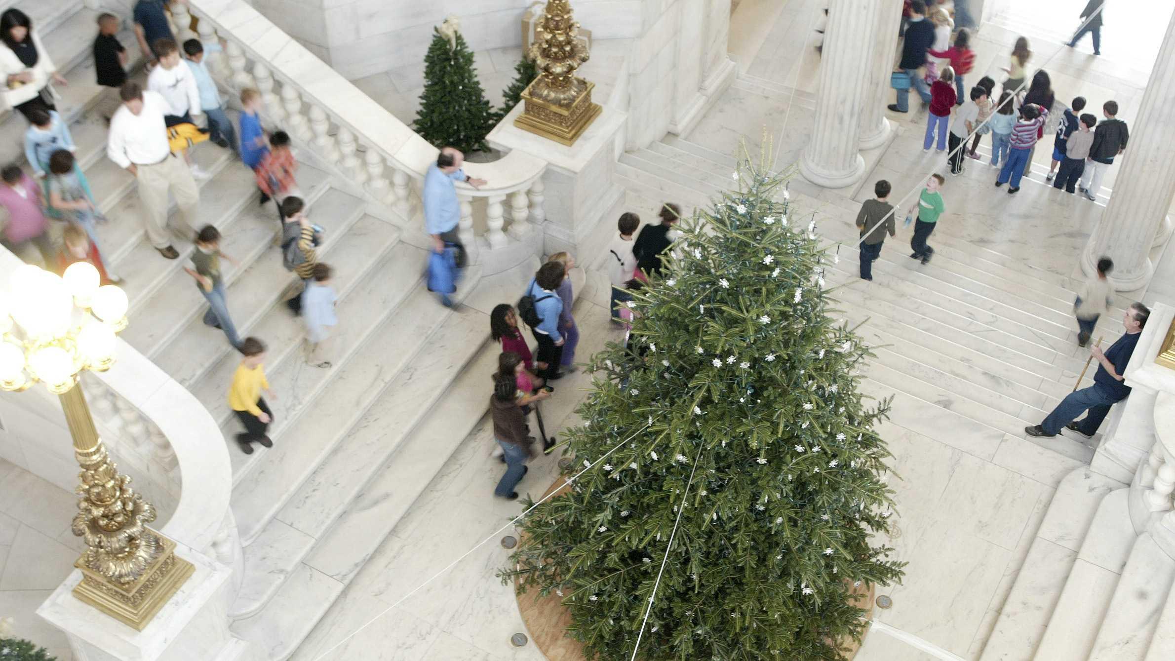 Rhode Island Statehouse Christmas Tree 120213