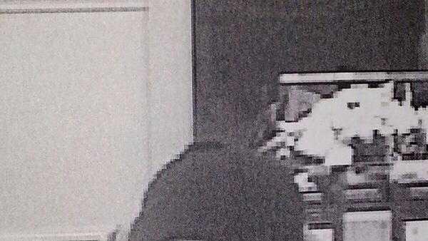 Stoughton Bank Robbery Suspect 122113