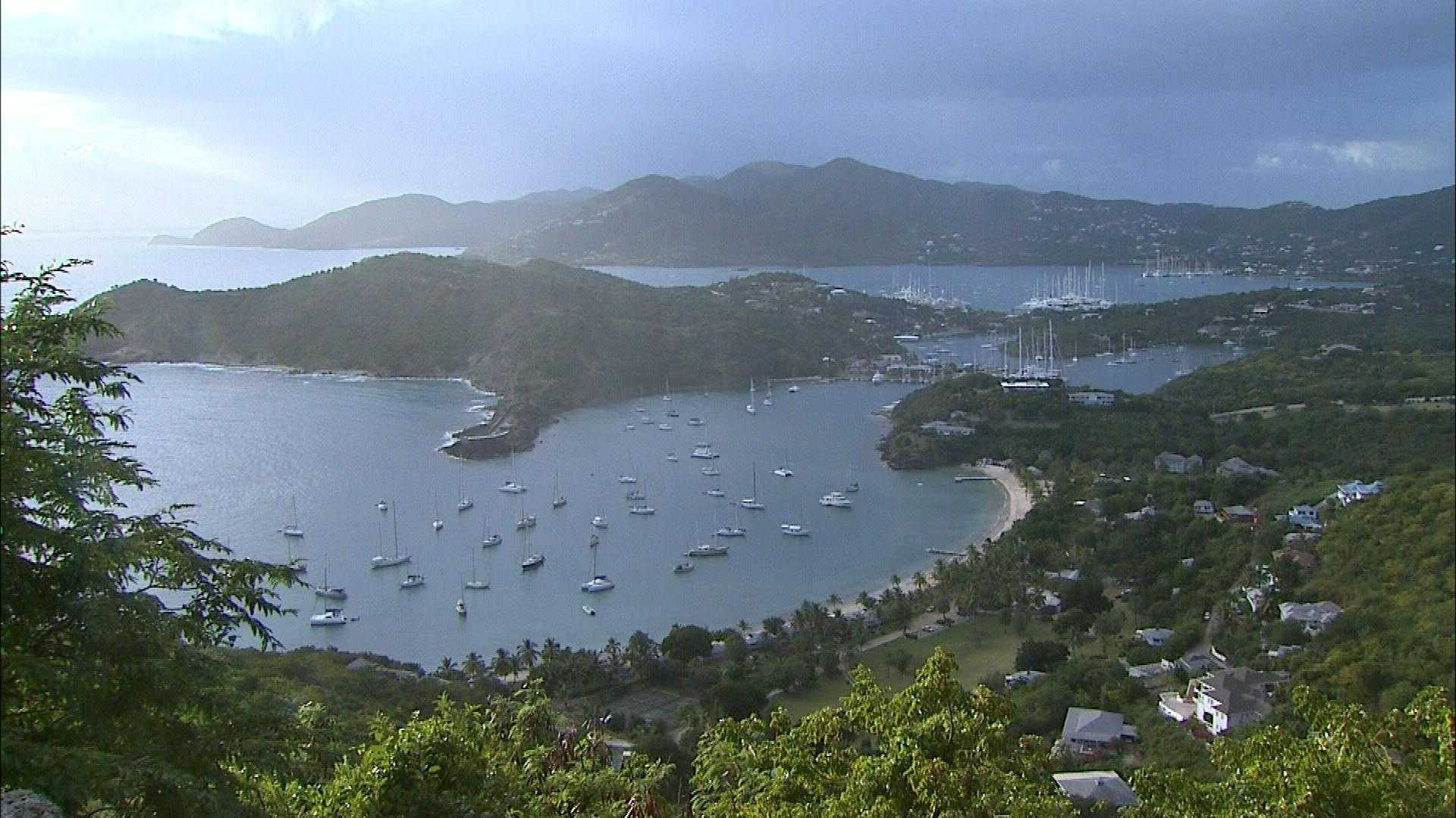Thursday, January 2: Tropical Travel Tour