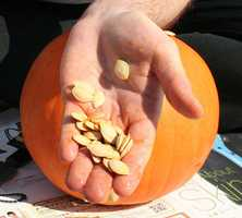 Pumpkin seeds can also help.