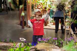 A boy visits a garden at the Flower and Garden show.