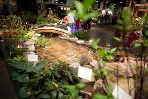 A mini garden at the show.