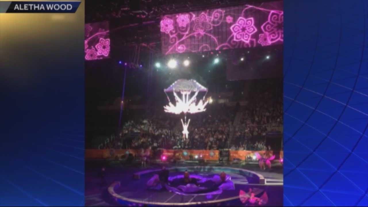 img-Circus fall stuns audience