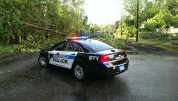 Trees down on Pollard Street in Billerica.
