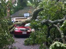Natick storm damage.