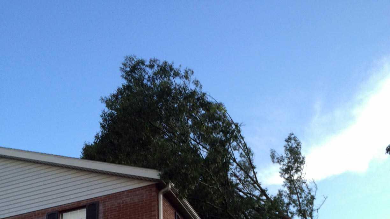 storms4.jpg