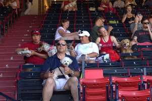 WCVB Facebook fan David Cooke shared these photos of the dogs and their owners having fun at the baseball park.