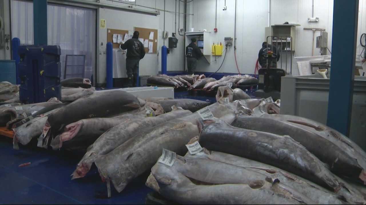 Seafood vendor calls for reinstatement of Artie T