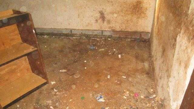 "Photos show horrific conditions inside Blackstone ""House ..."