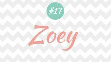 17 - Zoey