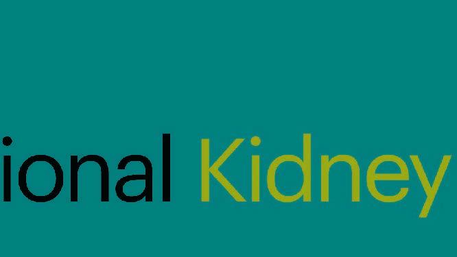 Kidney.jpg (1)