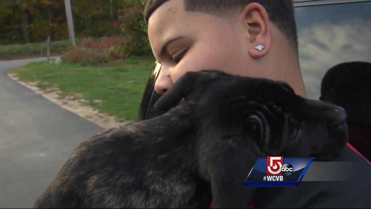 Lowell teen with service dog