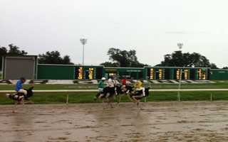 Ostriches and camels took to the Fair Grounds on Saturday to dash toward victory in an odd, but family fun event held on Saturday.