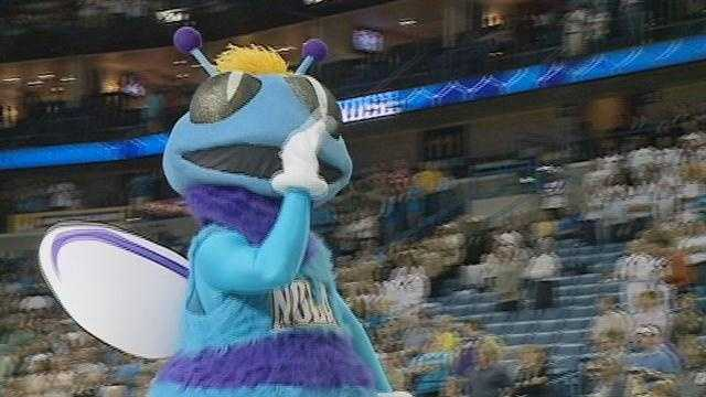 History of the Hornets