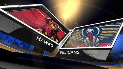 Hawks at Pelicans.jpg