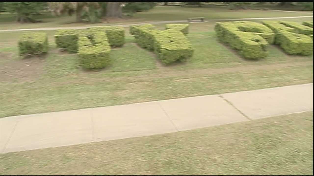 "A City Park official says they're not pointing fingers and taking full responsibility for an accident in which the ""C,"" and ""I"" from bushes that spell out ""City Park"" were cut down."