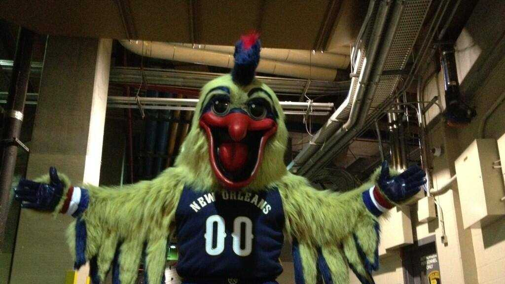 Pierre the Pelican