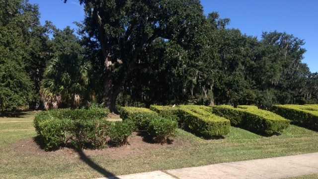 City Park hedges restored 2.JPG