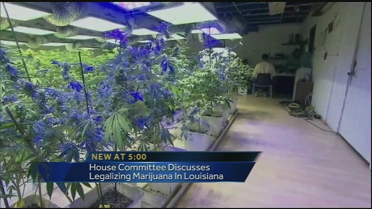 Louisiana lawmakers met Tuesday afternoon to discuss the legalization of marijuana.