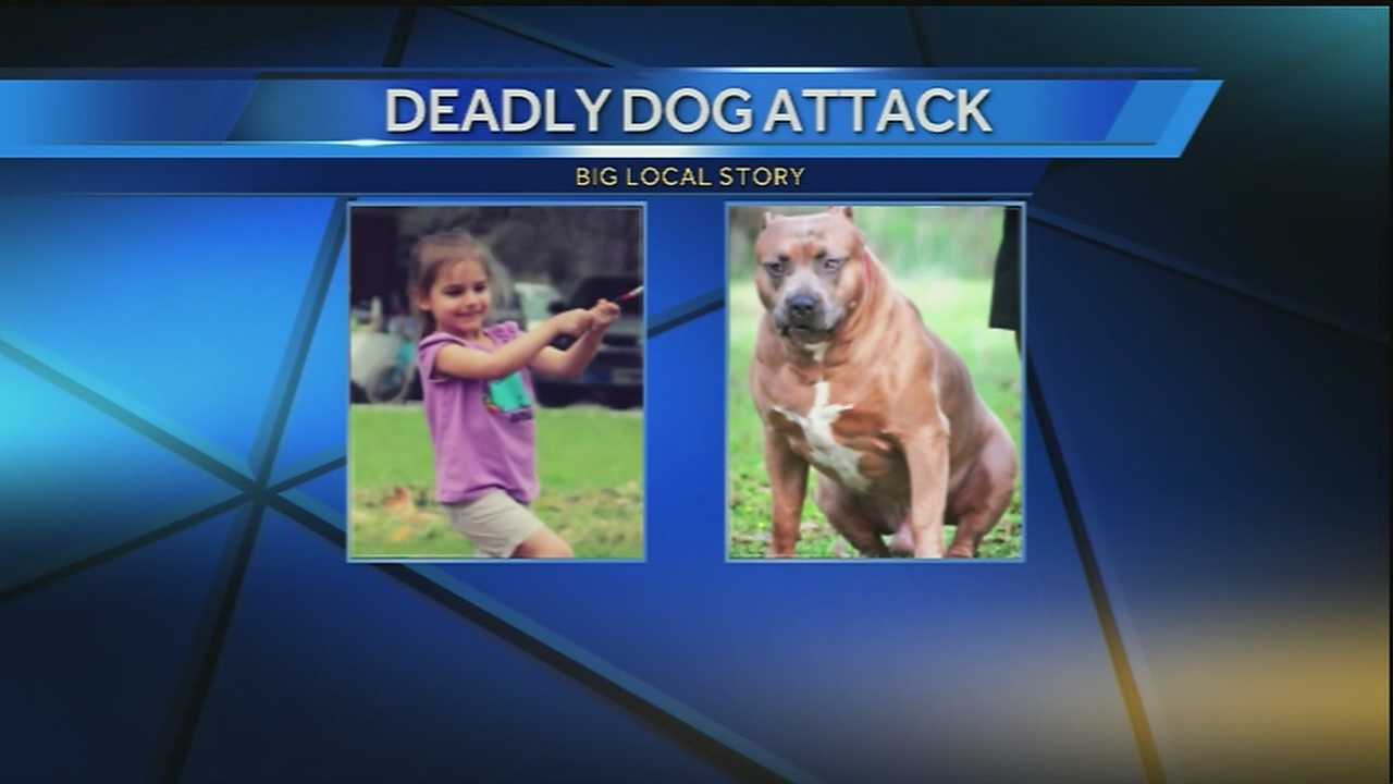 A mother was injured and her 4-year-old daughter was killed in a dog attack in Houma.