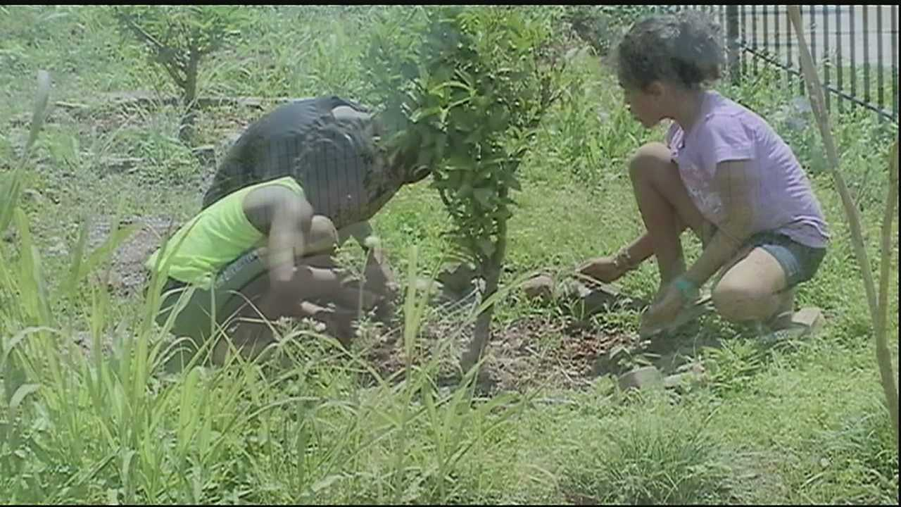 Once a week, 9-year-old Jayce Clivens comes out to the Gorilla Garden in the Lower Ninth Ward with his classmates to tend to their community garden plot.