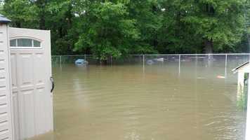 Covington backyard