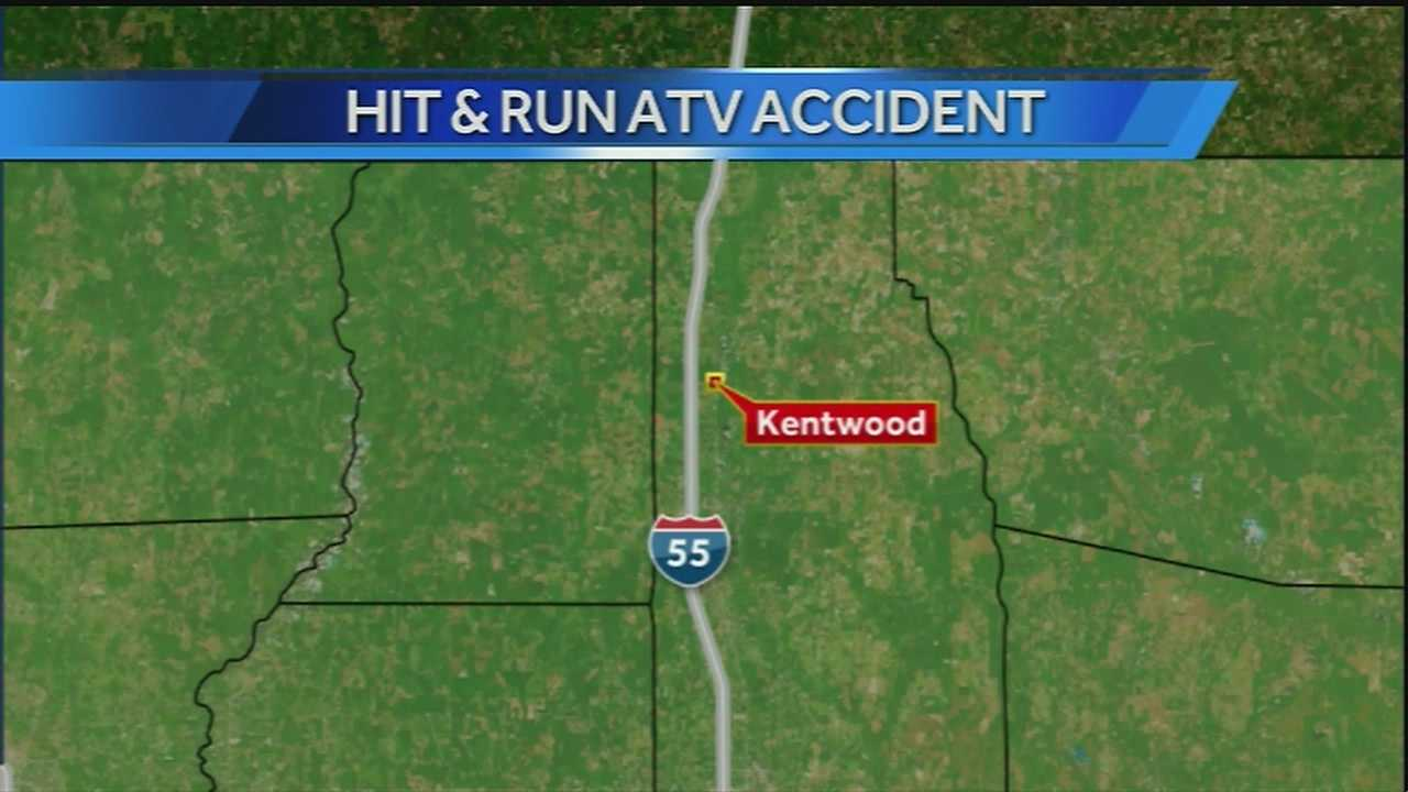 Police search for driver in fatal hit-and-run