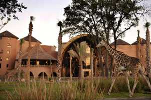 The Lodge sits on a 33-acre wildlife preserve.