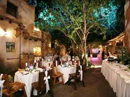 "For couples who want to go a little ""wild,"" why not look at Disney's Animal Kingdom for a reception spot?  Transport your guests to the romantically lit African village of Harambe."