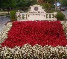 47: New Port Richey - 24.7 percent